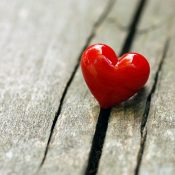 4235055-images-of-love